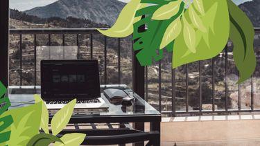 computer op bureau voor natuur