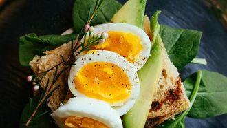 voeding die metabolisme verhoogt