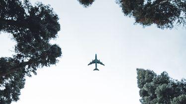 Vliegtuig tussen bomen