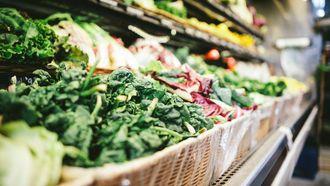 leren Zweden new nordic diet