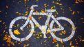 Een fietspad waar Circular over kan rijden