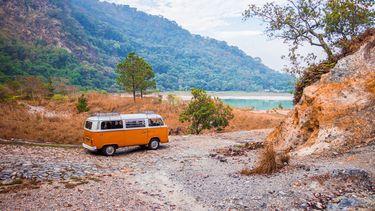 volkswagen busje in natuur