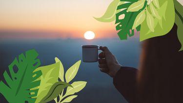 kopje koffie in natuur