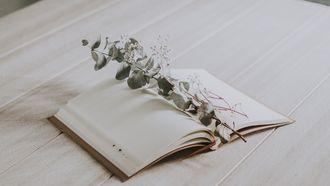 dagboek met plant