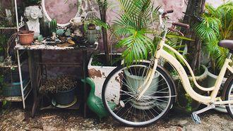 mindful fietsen