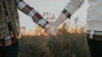 bestaat de perfecte relatie