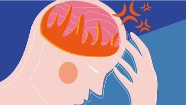 illustratie van hoofd en brein