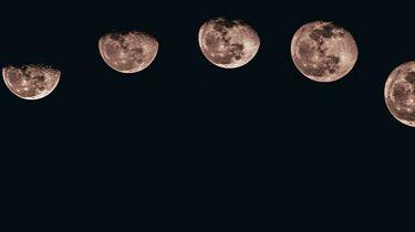 maan-update