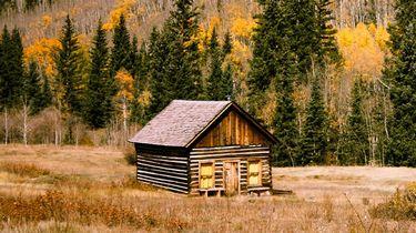 tiny house in bossen