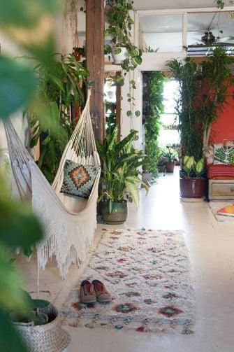 planten in huis