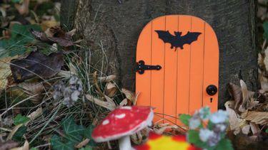 boom met halloween deur