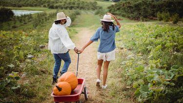 twee mensen lopen door een veld vol groente