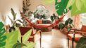 hangmat in een woonkamer