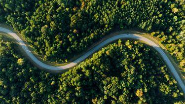 Weg die midden door een bos loopt, van boven gefotografeerd