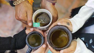 Tulsi Organic Tea