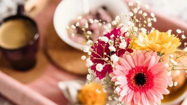 bloemen op zondag voor je ayurveda type