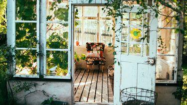 huis vol planten