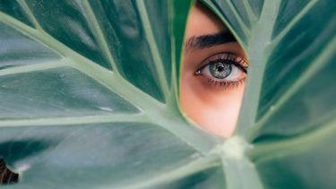 vrouw kijkt door groen blad