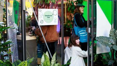 amsterdam, de groene stad, duurzaamheid