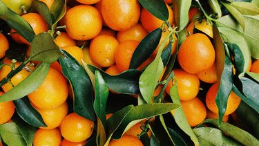 sinaasappels met bladeren bij elkaar
