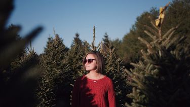 Vrouw tussen de kerstbomen, kerstboom
