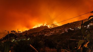 Bosbranden-Australie