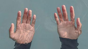 twee handpalmen