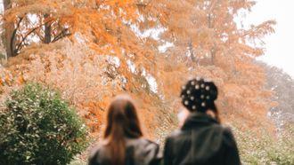 twee vrouwen lopen door park in de herfst