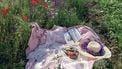 voeding in de zomer op picknick kleed