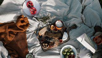 Vegan kaasplank picknick kleed