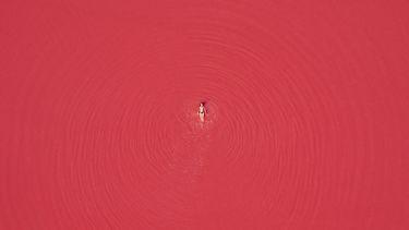 rood dragen