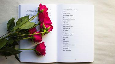 boeken tips - open boek
