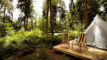 Røstig camping Laren