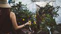 Vrouw die kiest voor een groener leven