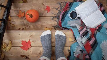 Herfst uitstapjes