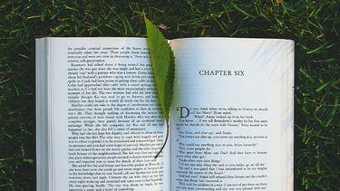 boek in het gras