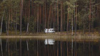 campervan in bos