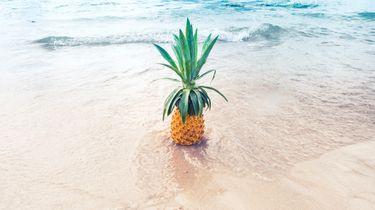 blije ananas