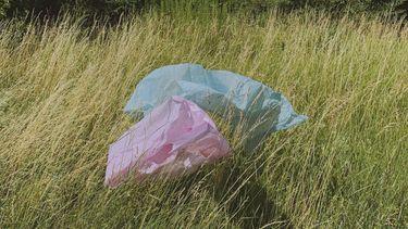 plastic tasjes in de natuur