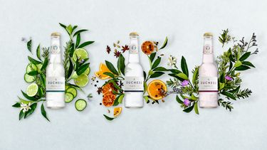 alcohol vrije gin tonics recept