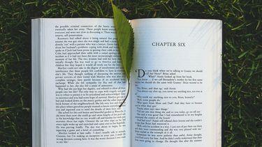 boek als voorbeeld van boeken voor een georiganiseerd leven