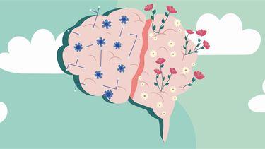 illustratie van twee verschillende hersenhelften