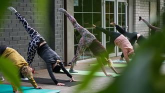 gids_beginnende_yogis