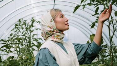 vrouw staat in plantenkas