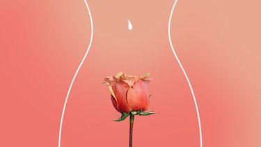 vrouwenlichaam en roos