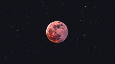 maanteken sterrenbeeld